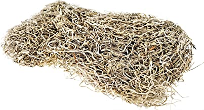 Spanish Moss - Dried - for Crafts - Flower Arranging - Potted Plants - Terrarium - Fairy Gardens - Floral Moss 8oz!