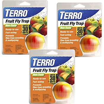 Terro T2500-3 Trap (Pack of 3), 3 Pack, Unknown