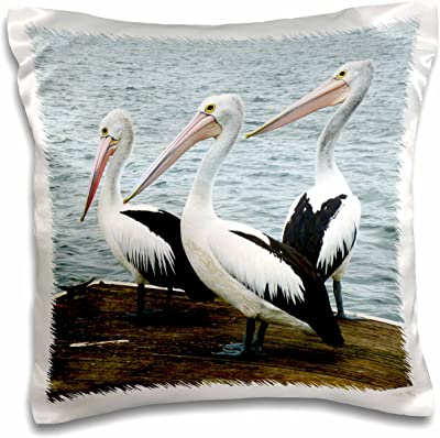 """3D Rose Image of Geese Pillow Case, 16"""" x 16"""""""