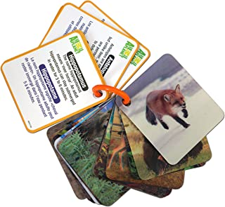 Best planet trading cards Reviews