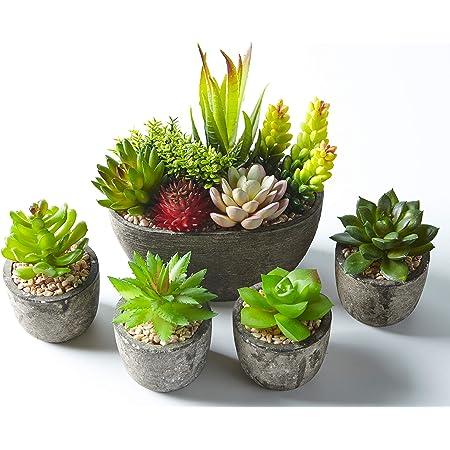 Jobary Ensemble de 5 Pots artificiels Succulents (Comprenant 10 Plantes), Faux Plantes succulentes colorées et décoratives avec Pierres, idéal pour la Maison, Le Bureau et la décoration extérieure