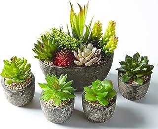 Jobary 5pcs Plantas Suculentas Artificiales Falso Plantas Decorativas Suculentas,Ideal para el Hogar Oficina y Decoración...