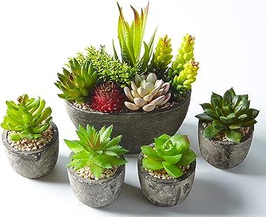 Jobary Ensemble de 5 Pots artificiels Succulents (Comprenant 10 Plantes), Faux Plantes succulentes colorées et décoratives av
