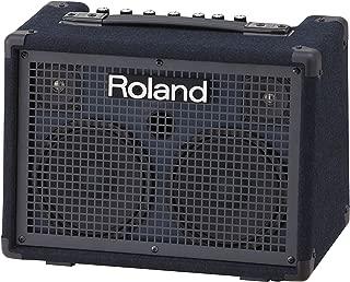 Roland Battery-Powered Stereo Keyboard Amplifier, 30 watt (15W + 15W) (KC-220)