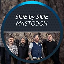 Side by Side with Mastodon