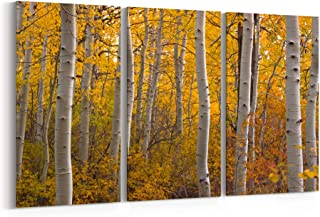 Best aspen tree art Reviews