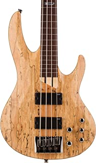 ESP LTD B-204SM FL Spalted Maple Fretless Bass Guitar, Natural Satin