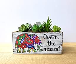 Live in the Moment Elephant Succulent Planter