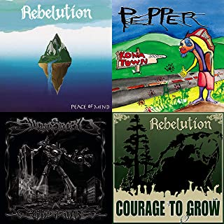 Rebelution and More