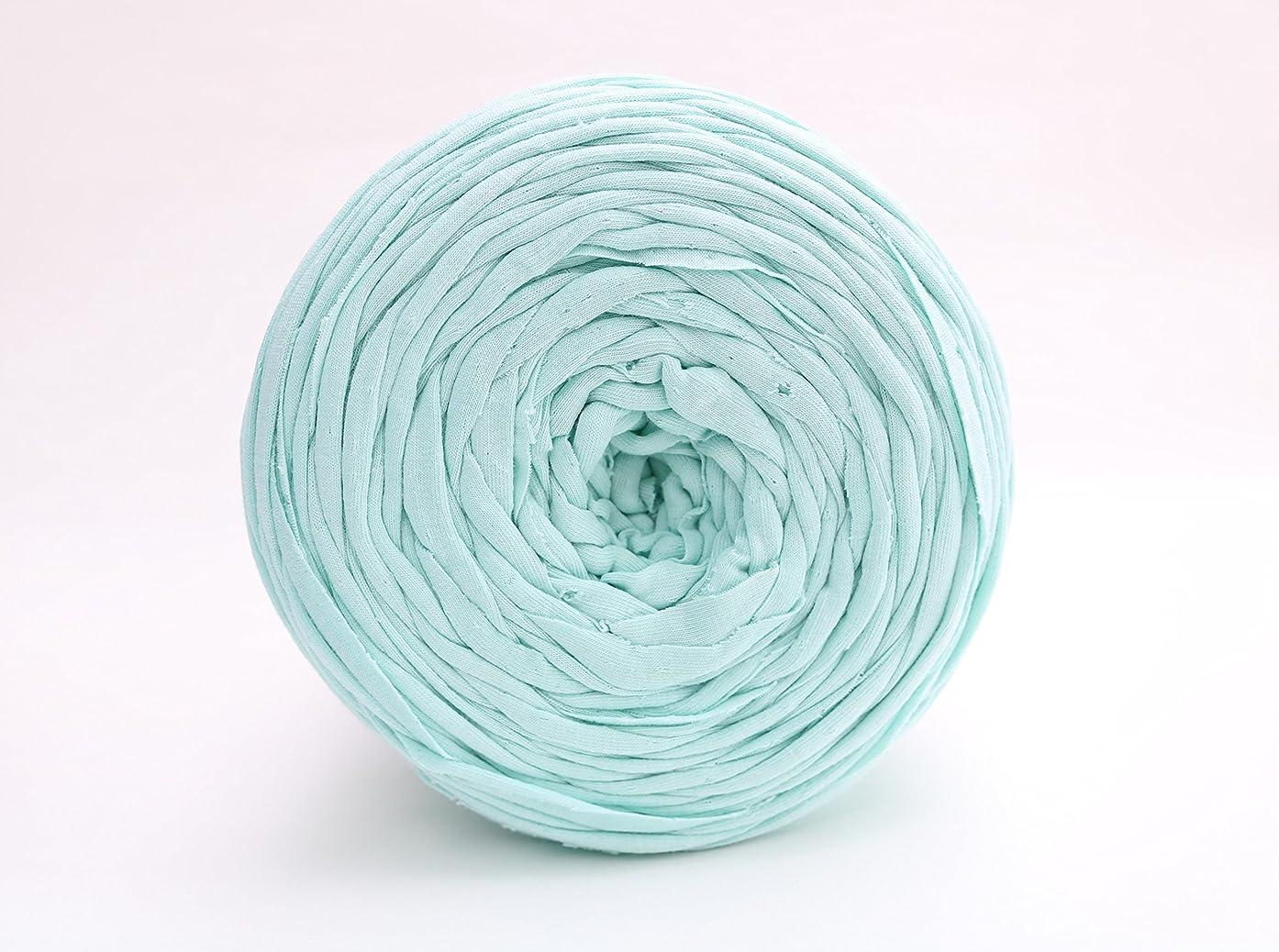 T-Shirt Yarn Recycled 130 Yards 1.5 lb Bulky Yarn│Jersey Yarn│Fabric Yarn │T Shirt Yarn for Crochet │ Knitting Tshirt Yarn │ Home Decor DYI Supply │ Recycled Yarn │Trapillo (Baby Green)