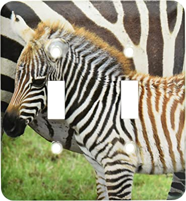 3drose Lsp 43790 2 2 Hugging Real Zebra Fur Toggle Switch Switch Plates Amazon Com