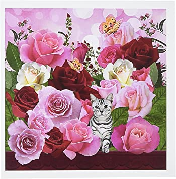 Amazon Com 3drose Pink And Red Roses Junes Birth Flower With Tabby Cat And Butterflies Perfect For The June Birthday Greeting Cards Set Of 6 Gc 79435 1 Blank Greeting Cards Office Products