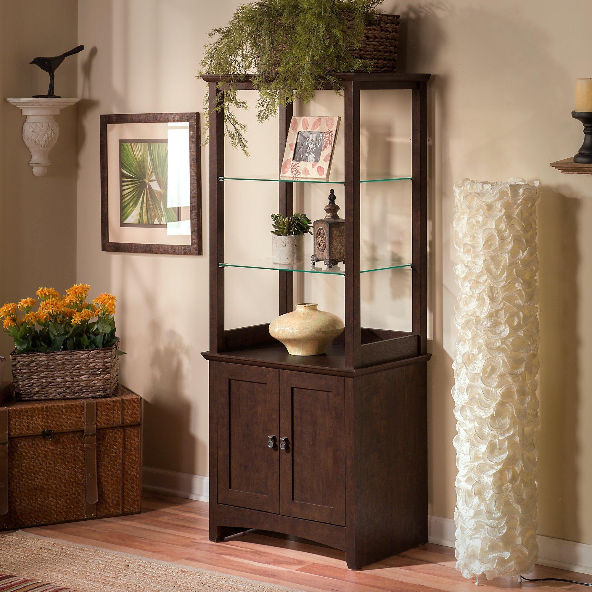 living room cabinets amazon com rh amazon com living room cabinets ideas living room cabinets black