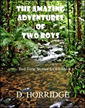 THE AMAZING ADVENTURES OF TWO BOYS: Bed Time Stories for Children (Once Upon a Time Children's Bed Time Adventure Series Book 1)