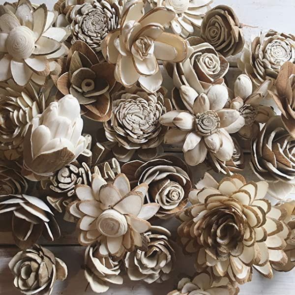 Oh You Re Lovely Sola Wood Flower Bark Assortment