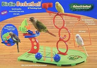 Caitec Nature's Instinct Birdie Basketball Playground