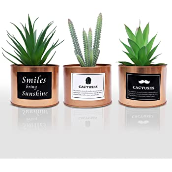 Plantas Artificiales Mini Macetas (Pack de 3) - (10x18 cm) Planta ...