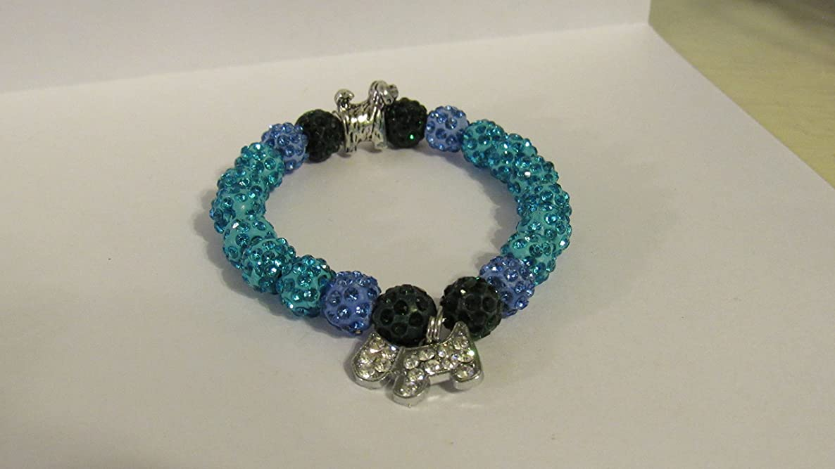 This aqua, blue and forest green shamballa, disco bead, bracelet will brighten anyone's day!