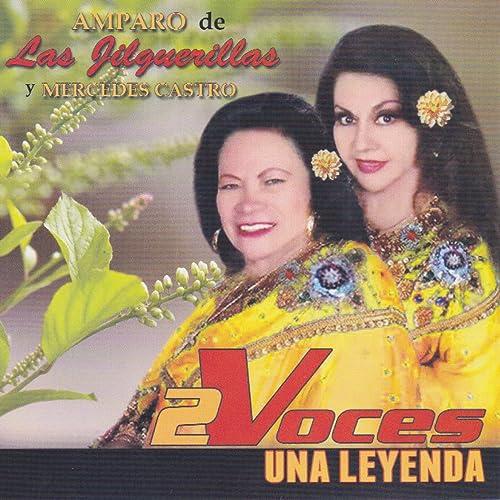 Querias Norte By Las Jilguerillas On Amazon Music Amazoncom