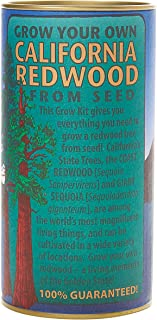 Best grow your own redwood kit Reviews