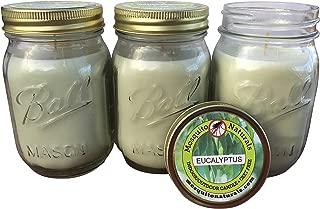 citronella candle mosquito repellent