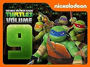 Teenage Mutant Ninja Turtles Season 9
