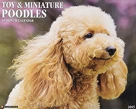 Toy & Miniature Poodles 2015 Wall Calendar