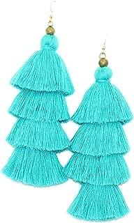 Colorful Fringe Tassel Earrings