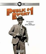 American Experience: Public Enemy #1