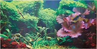 48x15x18 aquarium