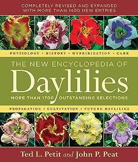 Best bulk daylilies for sale Reviews