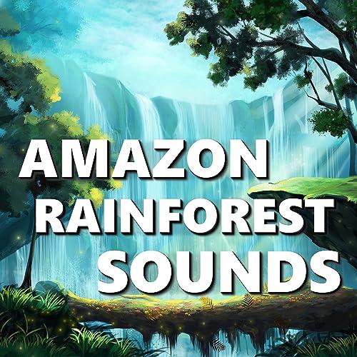 Jungle & Bird Sounds by Rainforest Sounds on Amazon Music