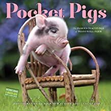 Pocket Pigs Wall Calendar 2017: The Famous Teacup Pigs of Pennywell Farm