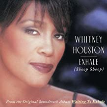 Best moment of truth whitney houston Reviews