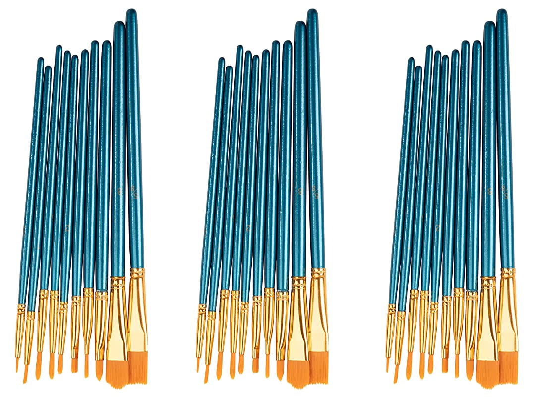 Paint Brushes - 30-Piece Paint Brush Set, All Purpose Nylon Hair Professional Artist Brushes for Acrylic, Oil, Watercolor Painting, 10 Different Sizes, Blue