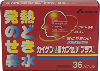 【指定第2類医薬品】カイゲン感冒カプセル「プラス」 36カプセル