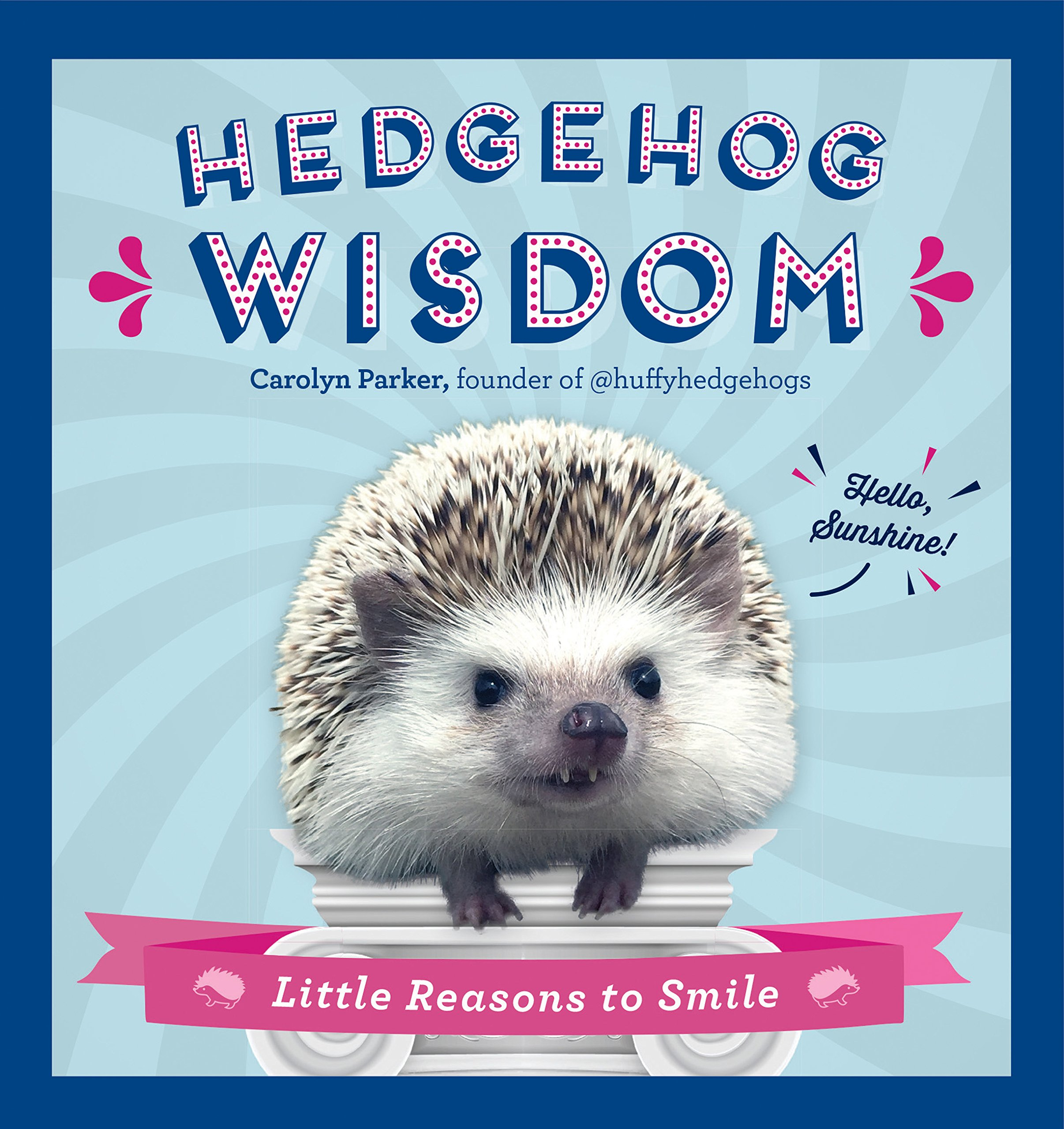 Image OfHedgehog Wisdom: Little Reasons To Smile