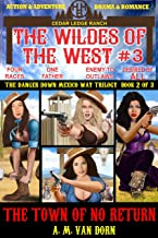 The Wildes of the West #3 The Town of No Return (The Danger Down Mexico Way Trilogy Book 2): Old west fiction of action adventure, romance & western family drama