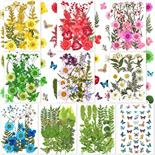 223 Pieces Real Dried Flowers Leaves and Butterfly Stickers Set, Multiple Pressed Dry Flowers Colorful Natural Daisies Flowers and Adhesive Butterfly Decals for DIY Resin Jewelry Nail Crafts