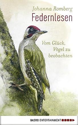 Blechschild XXL Vogel  Möve