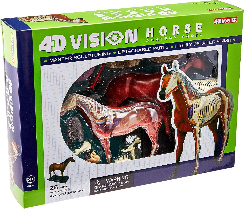 marca Tedco 4D Vision Horse Model by by by TEDCO  ventas de salida