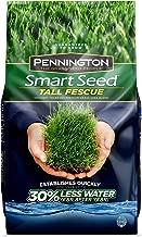 Pennington 100526675 Smart Seed Tall Fescue Grass Seed, 3 LB