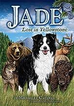 Jade-Lost in Yellowstone