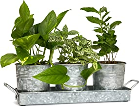 Best vintage garden pots and planters Reviews