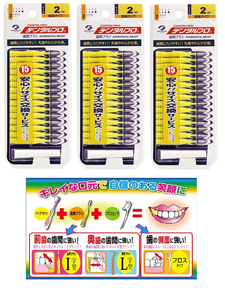 時間厳守突撃女性【Amazon.co.jp限定】DP歯間ブラシ15P サイズ2 3P+リーフレット