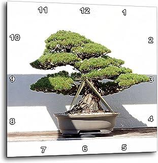 3dRose LLC Bonsai Tree Wall Clock, 10 by 10-Inch