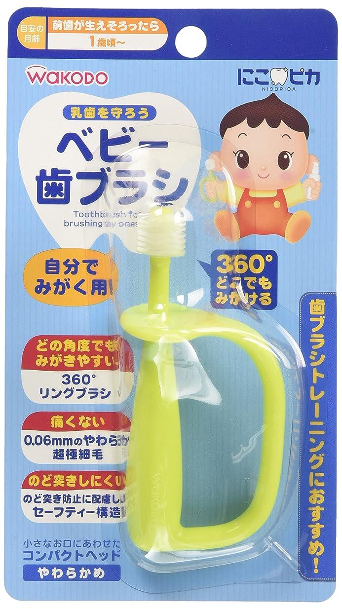 セメント乙女予知和光堂 にこピカ ベビー歯ブラシ 自分でみがく用 BH5