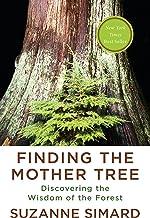 یافتن درخت مادری: کشف حکمت جنگل