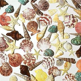 Pomeat Sea Shells, Mixed Beach Seashells, 70PCS Various Sizes Natural Seashells Starfish for Beach Theme, DIY Crafts, Part...