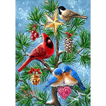 Colorful Bird 5D Diy Diamond Painting Kits with Square Drill Diamond Decor Christmas Gifts 7.9X9.8Inch